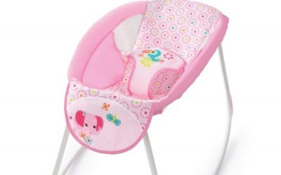 Infant Inclined Sleeping Products Recalled over Suffocation Risks and 73 Infant Deaths